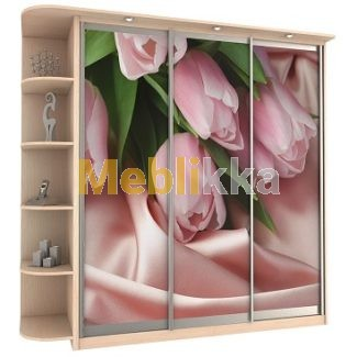 Купить шкафы-купе с фотопечатью цветов тюльпаны в Харькове под ваши размеры и желания.
