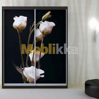 Купить шкафы-купе с фотопечатью белых цветов в Харькове под ваши размеры и желания.