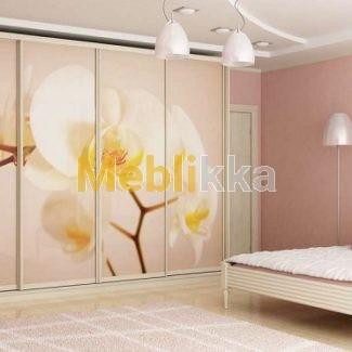 Купить шкафы-купе с фотопечатью орхидеи в Харькове под ваши размеры и желания.